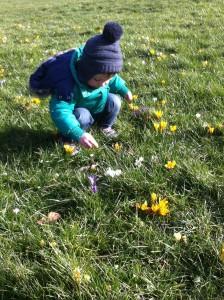foto Mees plukt bloemetjes 2